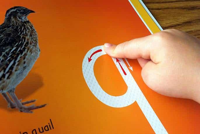 quail_small